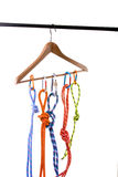Climbing ropes on hanger Stock Image