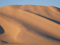Climbing Sand Mountain in Nevada Royalty Free Stock Photography