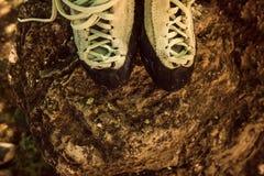 Climbing shoes. Royalty Free Stock Photo