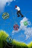 Climbing Spider Web. Stock Photos