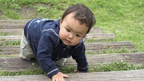 Climbing stairs. Young asian baby climbing stairs at a park Royalty Free Stock Photography