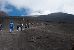 Climbing to the top of Etna volcano. Toward the top of Etna volcano, from ground covered by volcanic lava comes out of a petrified tree Stock Images