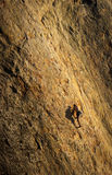 Climbing to the top. Male rock climber struggles for his next grip on the steep cliffs of Point Dume, Malibu, California Royalty Free Stock Images