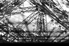 Climbing the the Tour Eiffel Stock Photos
