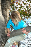 Climbing A Tree Royalty Free Stock Photography