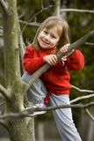 Climbing a tree Royalty Free Stock Image