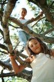 Climbing in tree stock photos
