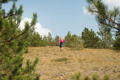 Climbing up the hill on summer day Stock Photography