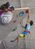 Climbing World Championship Royalty Free Stock Photography