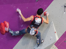 Climbing World Championship Royalty Free Stock Images