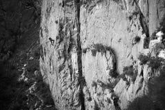 Climbs a vertical mountain Royalty Free Stock Photo
