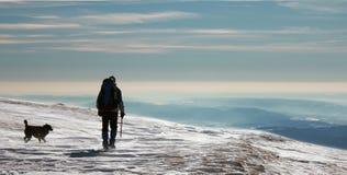 Climing Berge des Mannes und des Hundes Stockfoto
