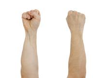 Clinched fist raised up isolated Stock Photography