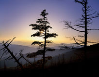 Clingman's Dome Sunset Royalty Free Stock Image
