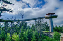 Clingmans圆顶-大烟山国家公园 库存图片