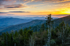 Clingmans Dome, Great Smoky Mountains, tennessee. Sunset over the Appalachain Mountains from Clingmans Dome in the Great Smoky Mountain National Park Stock Image