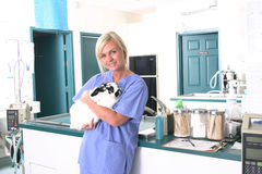Clinica veterinaria Fotografia Stock