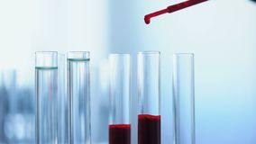 Clinical assistant analyzing blood sample, laboratory experiment, health care. Stock footage stock video
