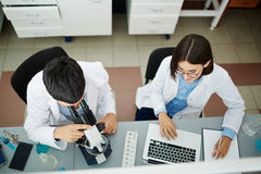 Clinicians at work Stock Images