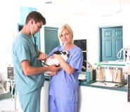 Clinique vétérinaire photographie stock libre de droits