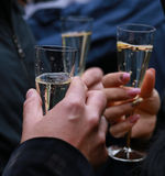 Clinked champagne glasses Royalty Free Stock Image