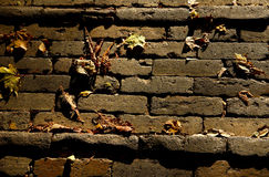 Clinker bricks Royalty Free Stock Images