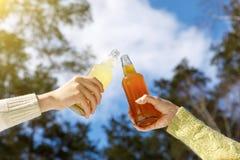 Clinking пивные бутылки Стоковое фото RF
