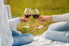 Clinking glases with wine on a picnic. On green background Stock Image