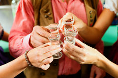 Clinking glasses with hard liquor Royalty Free Stock Images