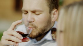 Clinking glasses on a picnic. Man and woman clinking glasses and drinking red wine on a picnic stock footage