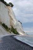 Clint Denmark. Mons klint, denmark, chalk coast Royalty Free Stock Photo