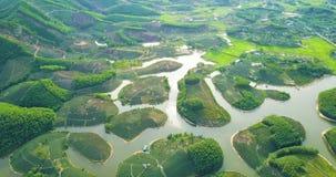 Clip aéreo de las plantaciones de té en Thanh Chuong, Nghe, Vietnam 4K 24p, longitud: 23s, 142MB, 51 MBps, ningún sonido metrajes