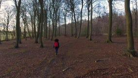 Clip aéreo del abejón de la mujer joven adolescente que camina con la mochila roja en arbolado del bosque almacen de video