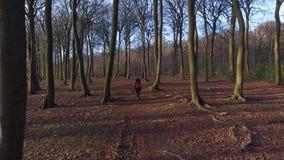 Clip aerea del fuco della giovane donna adolescente che fa un'escursione con lo zaino rosso nel terreno boscoso della foresta stock footage