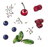 Clip art with berries, cherry, blueberry, raspberry, mint branch and sugary topping, hand drawn watercolor stock illustration