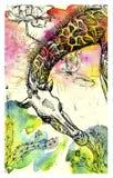Clip-art bright giraffe Stock Photo