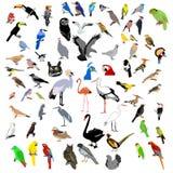 Clip-art des offres Image stock