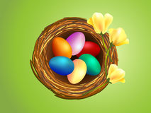 Clip-art of Easter eggs in nest. Illustration of colorful Easter eggs in nest with bright yellow blooming flowers Stock Photos