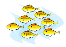 Clip-art of fish. Clip-art of gold fish Stock Images