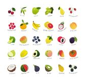 Clip art miniatures of fruits and berries. Vector clip art miniatures of common fruits and berries royalty free illustration