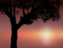 Clip-art of silhouette tree. Illustration of silhouette tree in detail at night Stock Photo
