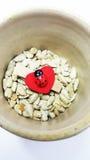 Clip de madera con la mariquita en corazón rojo en las semillas de girasol Fotos de archivo libres de regalías