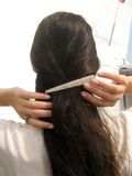 Clip on hair Stock Images