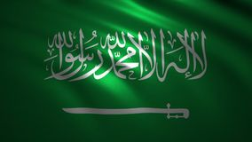 Animated Saudi Flag with shadow and light effect. stock video