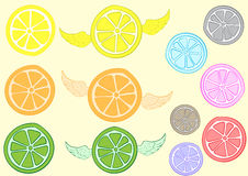Clipart with a citrus Royalty Free Stock Photo