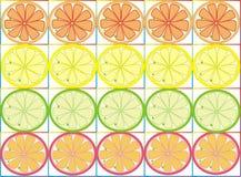 Clipart con la fruta cítrica libre illustration