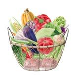Clipart de la acuarela de verduras en cesta Fotografía de archivo