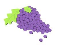 Clipart dell'uva Immagini Stock Libere da Diritti