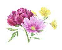 Clipart floral de la acuarela hermosa aislado libre illustration