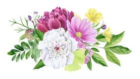Clipart floral de la acuarela hermosa aislado stock de ilustración
